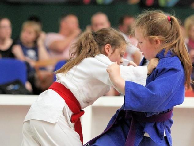 judo pic 2